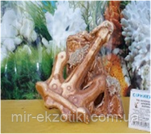 С249 Керамика