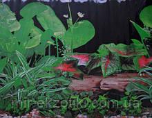 Фон для аквариума односторонний 40см арт.9011