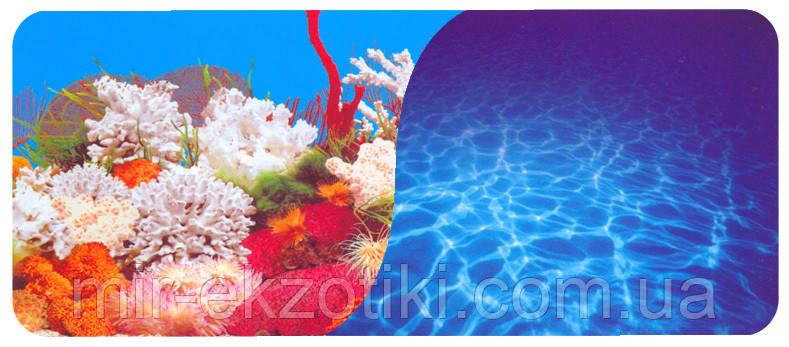 Фон для аквариума двухсторонний 70см 9029/9063