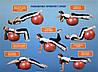 Мяч для фитнеса-85см 1350г, в кор-ке,Profit ball 23,5-17,5-10,5см, фото 6