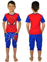 Летний костюм Спайдермен, Человек Паук