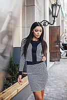 Женский  юбочный костюм, гусиная лапка с темно-синими вставками  . Арт-9946/79
