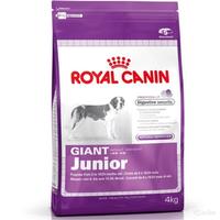 Giant Junior (4 kg)