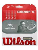 Струны для теннисной ракетки Wilson Sensation 16