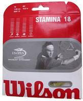 Струны для теннисной ракетки Wilson Stamina Spin