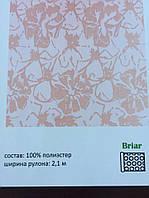 Рулонные шторы ткань:Briar, фото 1