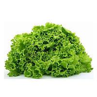 Неферин семена салата тип Маслянистый Semo 5 000 семян