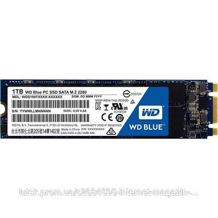 WD SSD Blue M.2  WDS100T1B0B, фото 2