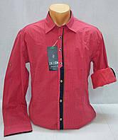 Рубашка мужская силуэта Slim Fit (Турция) р. M,  L, XL, 2XL