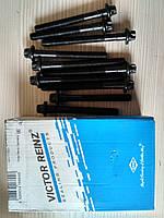 Комплект болтов головки блока Renault Kangoo Clio II Dacia Logan Sandero 1.4 1.6  ( 14-32089-01)