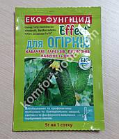 Биофунгицид Effect для огурцов, 5 грамм (кабачков, патиссон, тыкв, арбузов и дынь)