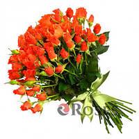 Алегрия 31 оранжевая кустовая роза