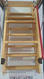 Сходи горищні Факро (FAKRO) LWK-305,70х130, Одеса, фото 3