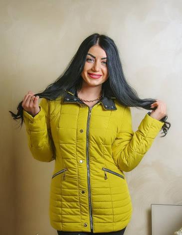 75bdd0b4093 Демисезонная стильная куртка 44-58 размер  продажа