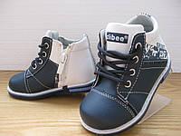 Ботинки для мальчика СМ96(20-25р)