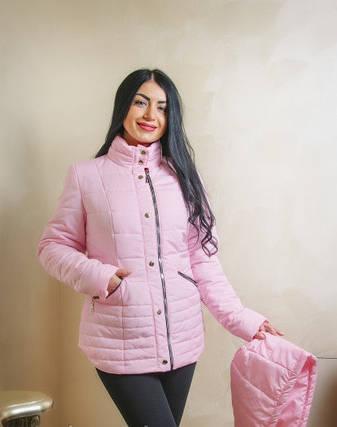 Демисезонная розовая куртка 44-58 размер, фото 2