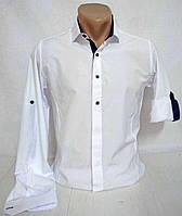 Рубашка белая с длинным рукавом р. S, 2XL