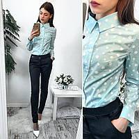 Костюм женский рубашка в горошек хлопок и брюки коттон Мемори Ds310