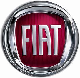 Коврик в багажник Fiat
