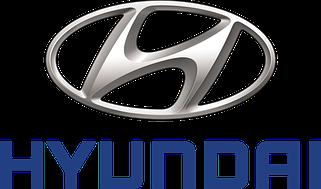 Коврик в багажник Hyundai