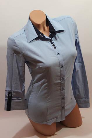 Женские однотонные рубашки EL5645 голубой, фото 2