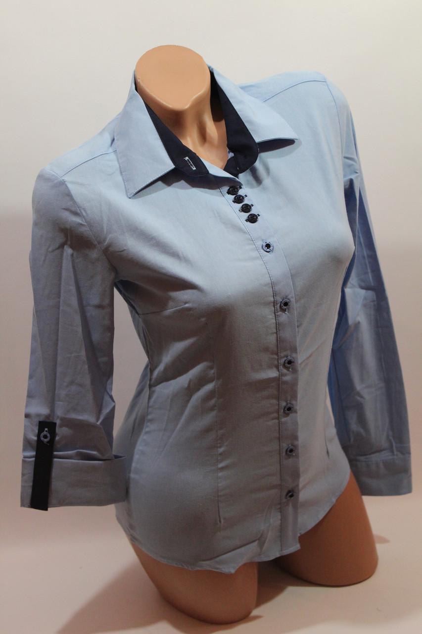 Женские однотонные рубашки EL5645 голубой