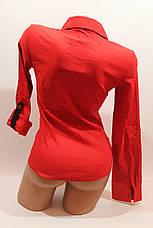 Женские однотонные рубашки EL5645 красный, фото 3