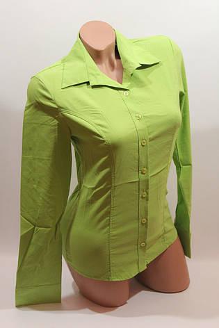 Женские однотонные рубашки (хлопок+ликра) EL 1553 лайм, фото 2