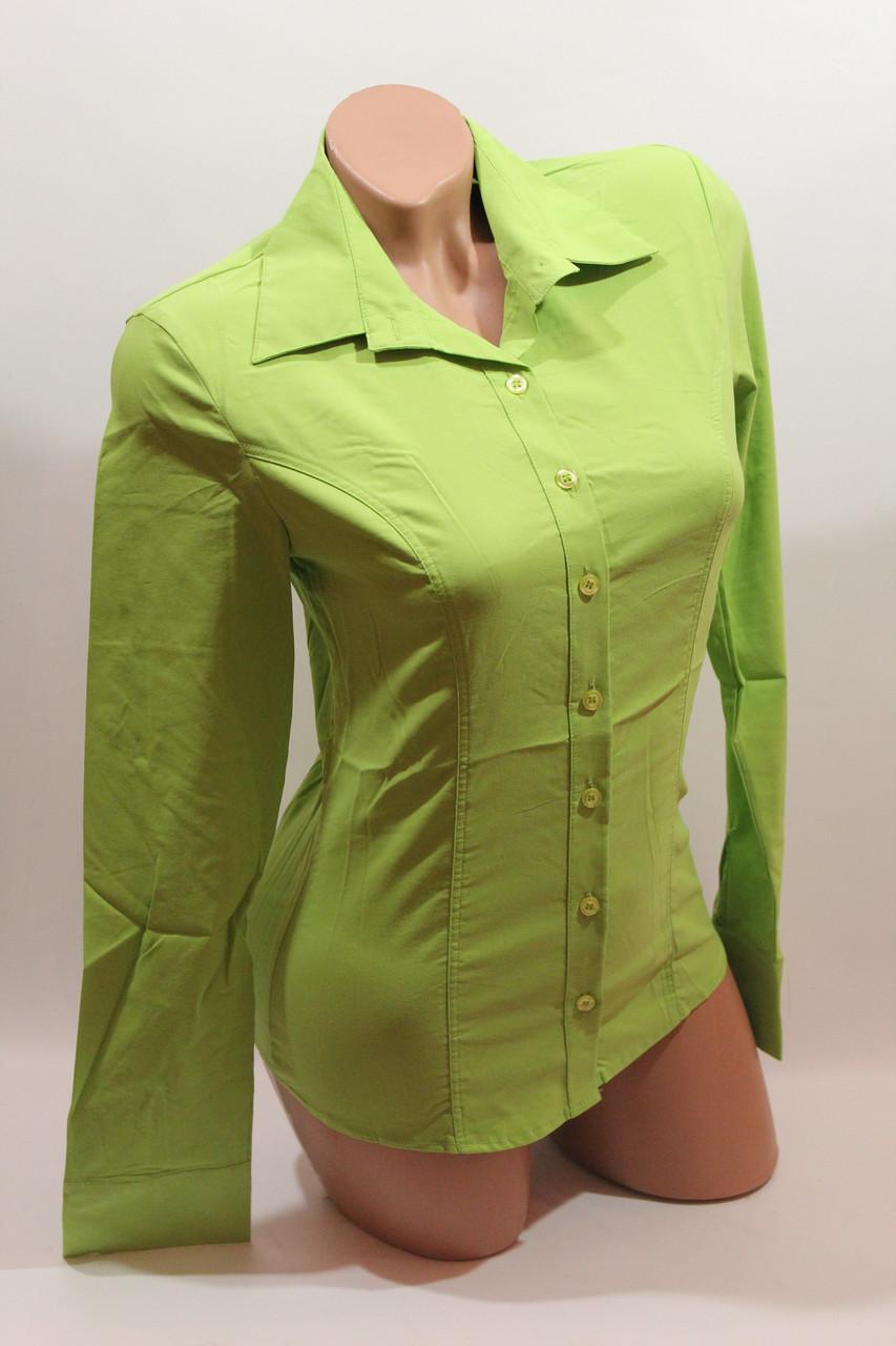Женские однотонные рубашки (хлопок+ликра) EL 1553 лайм