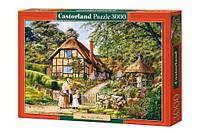 Пазлы Castorland Живописный уголок C-300358, 3000 элементов