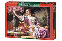 Пазлы Castorland Дама в лиловом 020, 3000 элементов