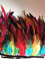 Перьевая тесьма из перьев петуха.Разноцветный.Цена за 0,5м