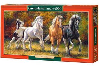 Пазлы Castorland Лошади ЛС-400119, 4000 элементов