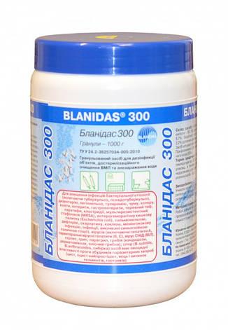 Бланідас 300 (хлорні гранули), фото 2