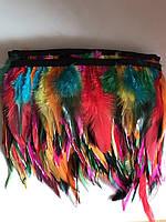 Перьевая тесьма из перьев петуха.Цвет светло-разнацветный.Цена за 0,5м