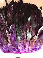 Перьевая тесьма из перьев петуха.Цвет черно-фиолетовый.Цена за 0,5м