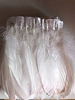 Перьевая тесьма из гусиных перьев .Цвет белый.Цена за 0,5м