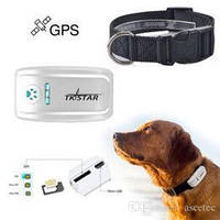 GPS ошейник TKStar TK909 для животных tk star 909 tk star909