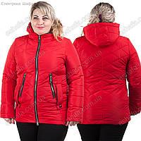 Женская весенняя куртка Берта красная 48-56рр, фото 1