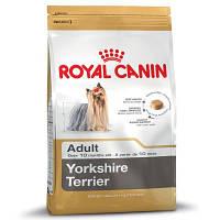 Yorkshire Adult (Йоркширский терьер 1,5 kg)