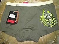 FABIO Мужские трусы боксеры  - шорты оливковые, фото 1