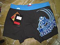 FABIO Мужские трусы боксеры  черные, фото 1