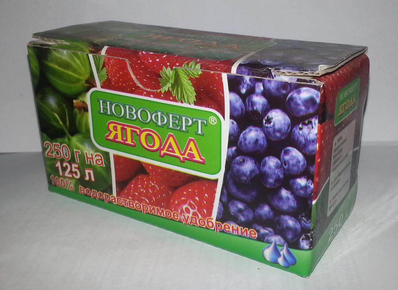 Удобрение Новоферт ягода 250 гр. NPK 12-12-36+1MgО+1S+МЭ