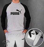 Спортивный костюм Puma 14895