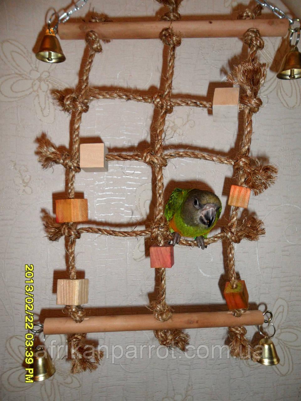 Игрушка для попугая (Веревочная сеть)