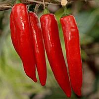 Козумел F1 семена перца острого United Genetics 1 000 семян