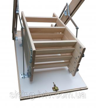 Сходи на горище 120-80 Bukwood Compact Long висота 340 мм (Буквуд)