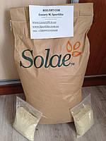 Изолят соевого белка SOLAE 92% (made in USA)