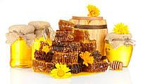 Покупаем мед в Днепровской области