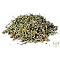Лапчатка кустарниковая (Курильский чай) 100 грамм